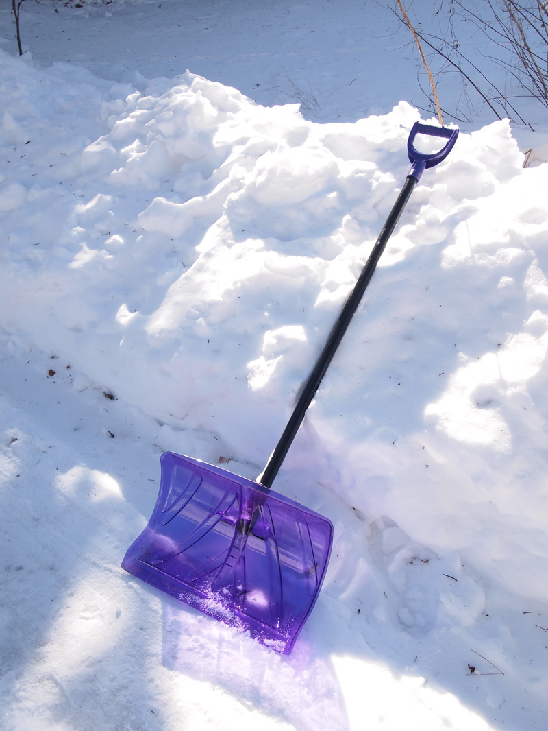 A Snow Shovel